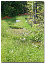 Certified Erosion Control Vermont